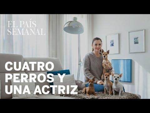 Miren Ibarguren | Amos y Mascotas | El País Semanal