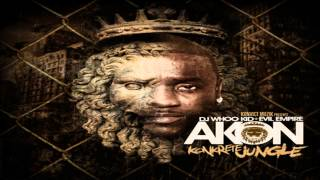 Watch Akon Slow Motion video