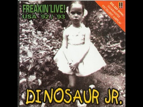Dinosaur Jr - Hickory Wind