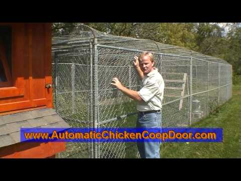 A Tour of our Chicken Coop & Automatic Chicken Coop Door Opener