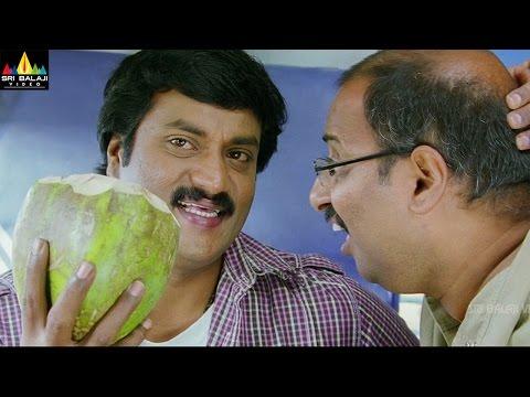 Maryada Ramanna Telugu Movie Part 3/11 | Sunil, Saloni | Sri Balaji Video