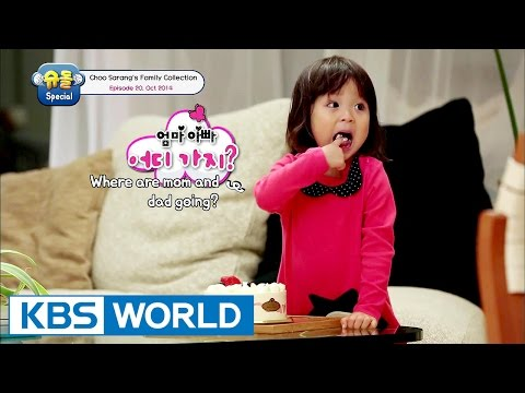 The Return Of Superman - Choo Sarang Special Ep.20