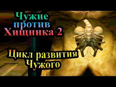 Прохождение Aliens versus Predator 2 (Чужие против Хищника 2) - часть 15 - Цикл развития Чужого