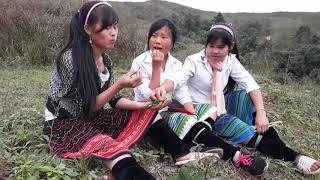 hmong new movie tawm tshiab  2018 / 2019 - dab poj ntxoog