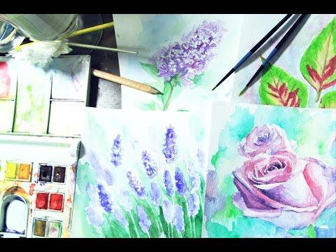 Speed Painting : Watercolor Flowers
