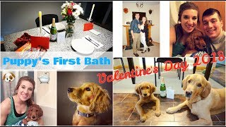 Puppy's First Bath & Valentine's Day 2018 | Weekly Vlog | Cindy&Family