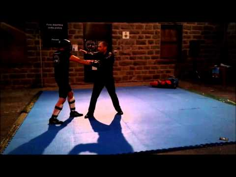 Jeet kune do concepts p.2 Image 1