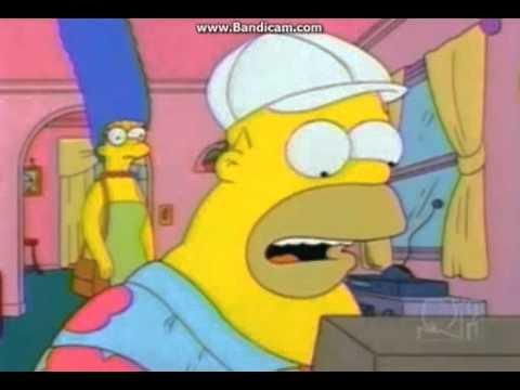 Homer's typing Bird