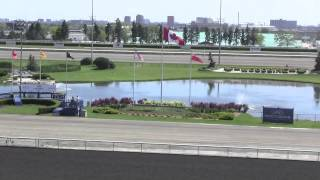 A Day at the Racetrack - Woodbine Oaks Thoroughbred Horse Racing - Short Film