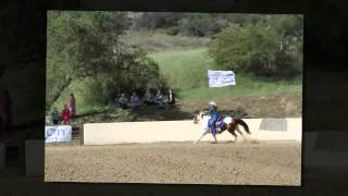 Pageant Day Horsemanship