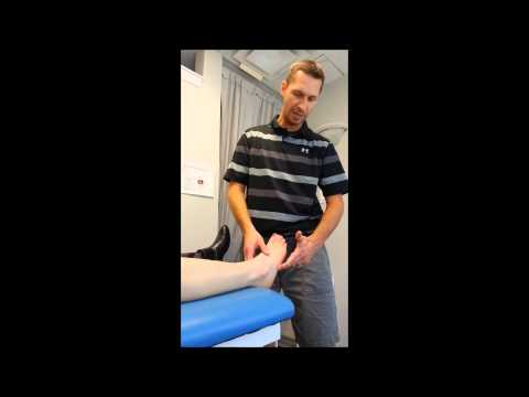 Anatomy 101 /3, Oakville Physiotherapist Jason. Ankle pain and swelling.