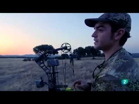 Caza con arco de poleas - Rabbit hunting with a bow of pulleys - Parte 1/2