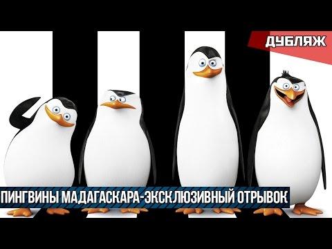 Пингвины Мадагаскара | Эксклюзивный Отрывок | Дубляж 2014 (HD)