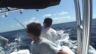 Dolphin Florida Keys Part 1 Get-Reel Fishing