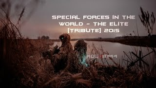 Special Forces in the World - The Elite [TRIBUTE] 2015