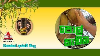 Sirasa FM Tarzan Bappa Upset Song