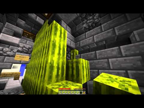 WATERMELON MASSACRE Minecraft: FUNNY COPS N ROBBERS 3.0 Mini Game w Mitch Friends