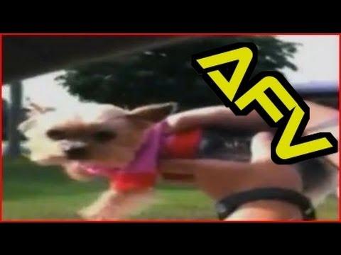 Home Videos - Part 235