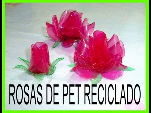 Rosas con botellas de PET