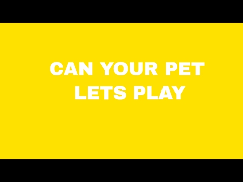 THIS GAME HAS TO BE REPORTED Can Your Pet let's play