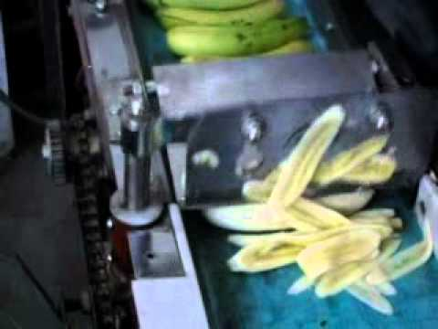 Banana Cutter Cutting Machine Youtube