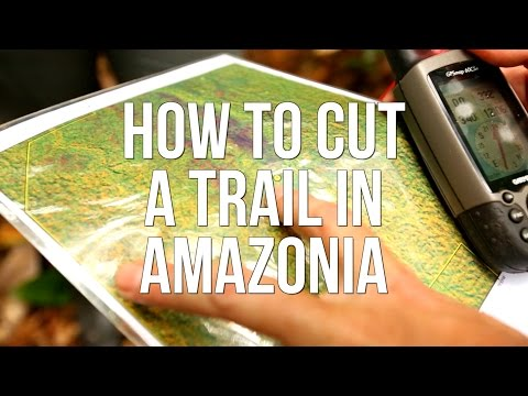 How to Cut a Trail in Amazonia