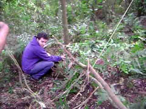 Sobrevivencia na selva - ARMADILHA 2 - ESSE DEU CERTO!! AERONOVA