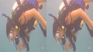 Diving in Delray Beach, Florida, U.S.A. STEREOSCOPIC 3D II