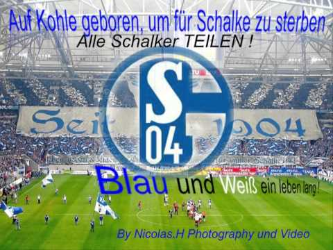 Schalke 04 Torhymne 2013 video