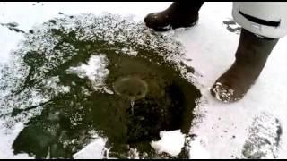 рыбалка на корчагинце саранск