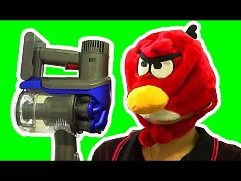 How To Kill A Cockroach Vs Dyson DC35 Stick Vacuum Angry Birds Don't Ever Mess With Them!