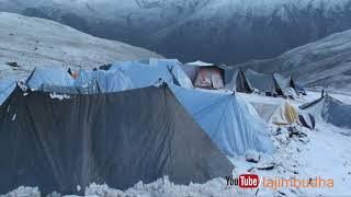 Himalayan life into the snow ❄️ yarsagumba