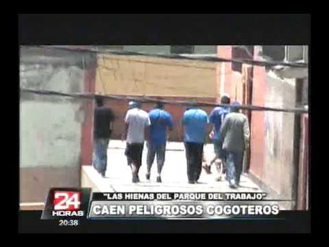 San Martín de Porres: cae banda 'Las hienas del Parque del Trabajo'