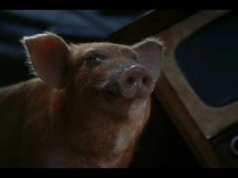 Animal farm movie 1999