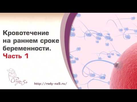 Кровь при беременности на ранних сроках