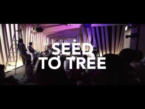 "SEED TO TREE - "" Wandering ""  EXIT:LX Session live"