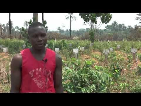 FOYA- The Story of Liberia Ebola Epicenter