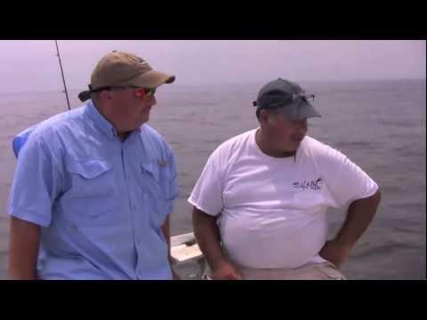 Fluke Fishing with Live Bait