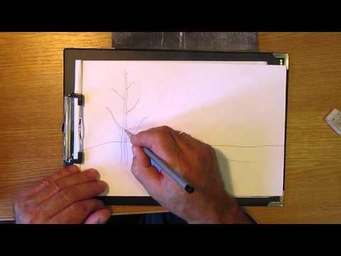 Видео как нарисовать берёзу зимой