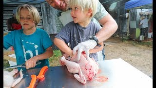 The Day we Butchered 100 Chickens