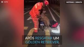 Momento em que bombeiro herói salva cachorro na China