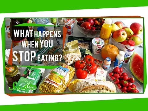 What Happens When You Stop Eating?