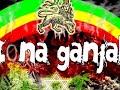 Zona Ganjah-Fumando Vamos A [video]