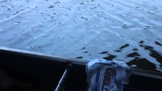 Drinking Beer on the Boat Under the Bridge in Oahu