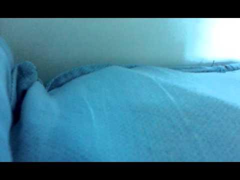 Javkhlan, Erdenechimeg  Har Harhan Harts video