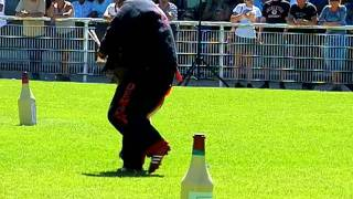 VOGHAR DU CLOS CHAMPCHENY finale Ring 2011 à Tavaux, Face