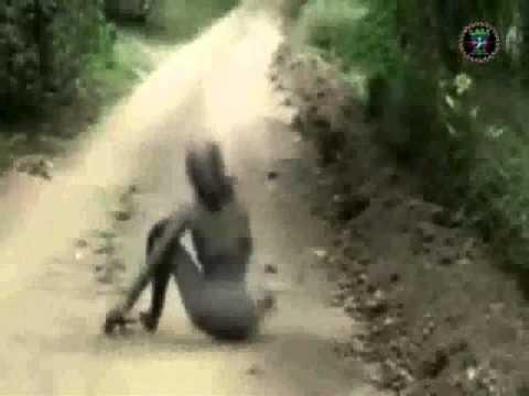 As tr s melhores filmagens de paranormalidade descobertas youtube - Casos de alcoholismo reales ...