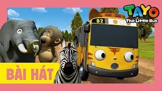 Bài hát mở đầu Tayo (Safari phiên bản) l bài hát cho trẻ em l Tayo xe buýt nhỏ
