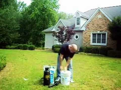 Septic Flow Shock Q&A   Septic Drainfield Repair Explained