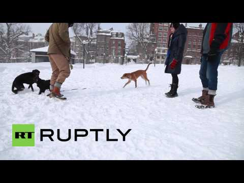 USA: RECORD-BREAKING snowfall in Boston as Winter Storm Neptune strikes